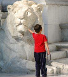 El león no muerde...